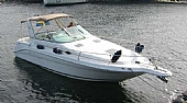 Begagnad Sea Ray 290 Sundancer 32